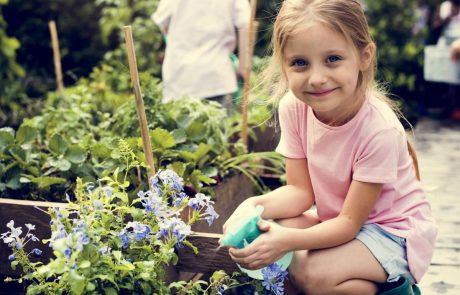 לגדל ילדים כמו במושב: פחות ממיליון שקל לדירה בחריש